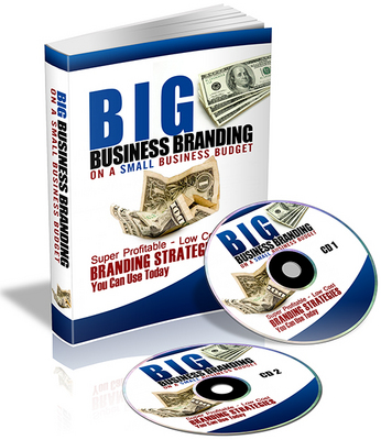 Product picture Big Business Building on a Small Business Budget - Exposed