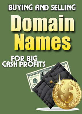 Product picture Buy and Sell Domains - Make Money With a Flip